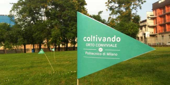 coltivando_l'orto_conviale_al_poltecnico_di_Milano_Bovisa